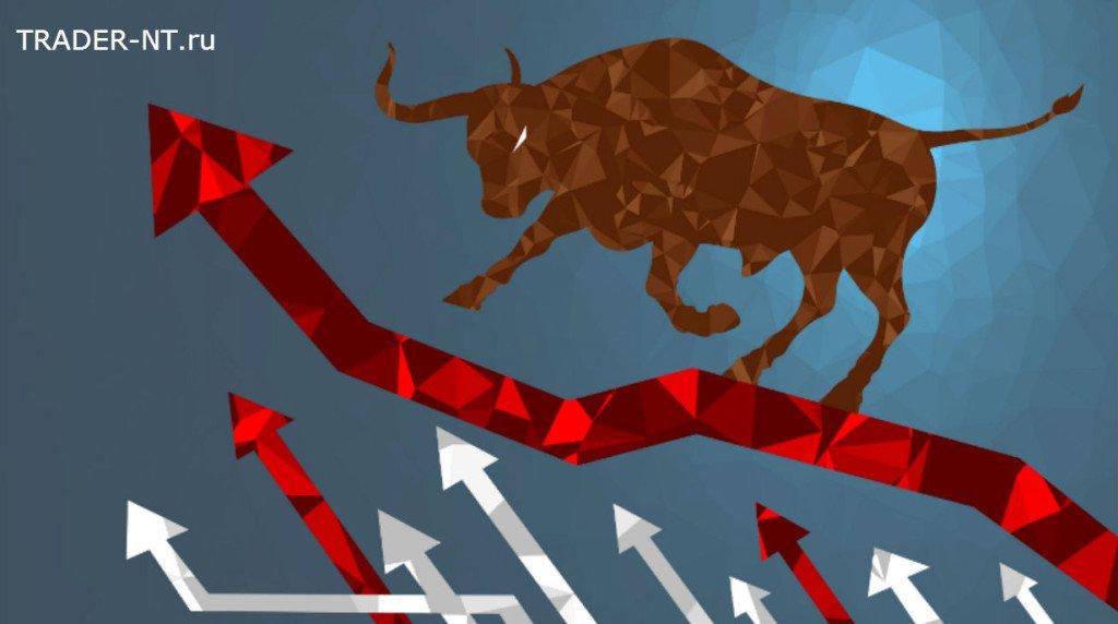 Что такое гарантийное обеспечение на срочном рынке фортс?